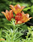 Calendario Fiori delle Alpi - Alpenblumen 2017