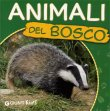 Animali del Bosco Martina Boschi
