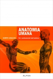 Anatomia Umana Alberto Ansaloni