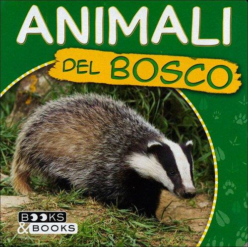 Animali del bosco libro di martina boschi for Immagini del piano casa gratis