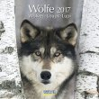 Calendario Wölfe Lupi 2017 Korsch Verlag