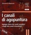 I Canali dell'Agopuntura - Schede Giovanni Maciocia