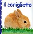 Il Coniglietto - Libro di Dawn Sirett