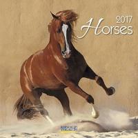 Calendario Horses 2017 - Korsch Verlag