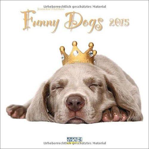Calendario funny dogs 2015