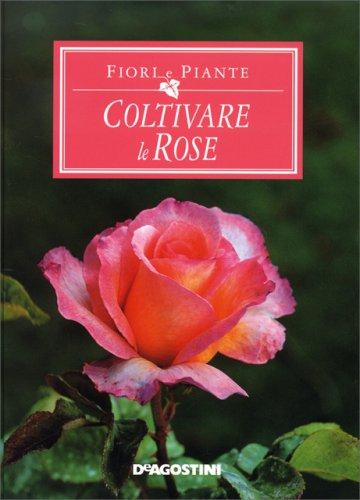 Fiori e piante coltivare le rose libro di de agostini for Rose piante