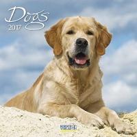Calendario Dogs 2017 Korsch Verlag