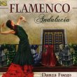 Flamenco Andalucia Danza Fuego