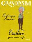 Grandissimi - Einstein, Genio Senza Confini Pierdomenico Baccalario