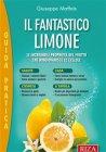 Il Fantastico Limone (eBook) Giuseppe Maffeis