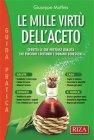 Le Mille Virtù dell'Aceto (eBook) Giuseppe Maffeis