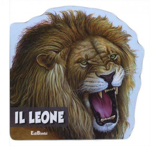 Conoscere Il Leone