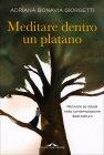 Meditare Dentro un Platano Adriana Bonavia Giorgetti