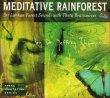 Meditative Rainforest Jeffrey Thompson