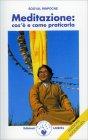 Meditazione: Cos'è e Come Praticarla Sogyal Rinpoche