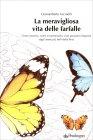La Meravigliosa Vita delle Farfalle di Gianumberto Accinelli
