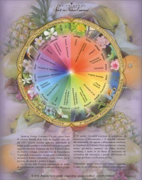 Mini Poster Essenze Floreali - Inner Life