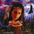 Native American Prayer Llewellyn