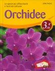 Orchidee Jorn Pinske