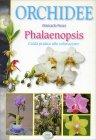 Orchidee Phalaenopsis Giancarlo Pozzi