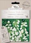 Semi di Campanula Medium - Bellflower White Single