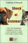 Shock al Sistema!