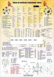 Poster Sinossi di Medicina Tradizionale Cinese David Soldati