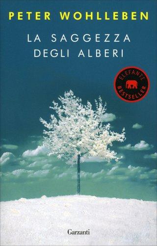 La saggezza degli alberi peter wohlleben libro for La stanza degli ospiti libro