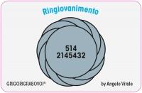 Tessera Radionica 14 - Ringiovanimento