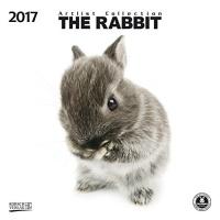 Calendario Coniglietti - The Rabbit 2017 Korsch Verlag