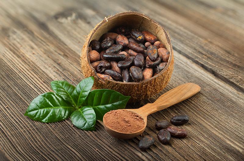 Cacao Nibs  - Semi di Cacao a Pezzetti