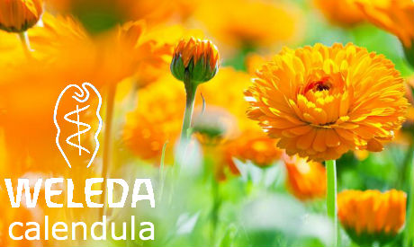 Cofanetto Weleda - Love My Baby alla Calendula