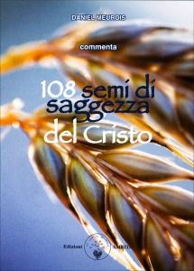 108 SEMI DI SAGGEZZA DEL CRISTO 108 carte per orientarci verso la saggezza e la compassione di Daniel Meurois