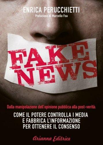 Fake News (eBook)