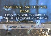 Imaginal Archetype Basic (Video-Seminario)