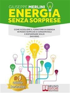 Energia Senza Sorprese (eBook)