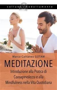 Meditazione (eBook)