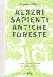 Alberi Sapienti Antiche Foreste