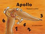 Apollo, Numeri e Colori