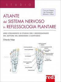 Atlante del Sistema Nervoso in Riflessologia Plantare