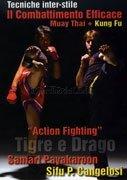 Action Fighting - Tigre e Drago