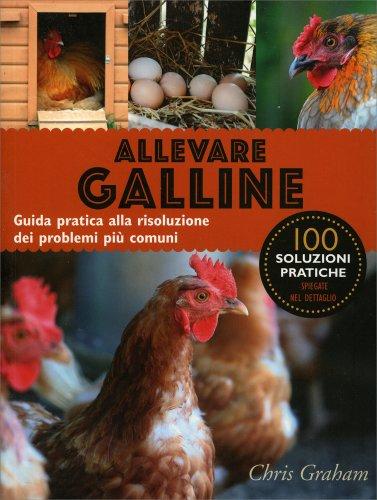 Allevare Galline