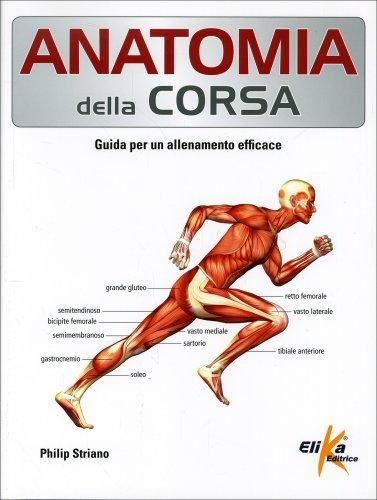 Anatomia della Corsa