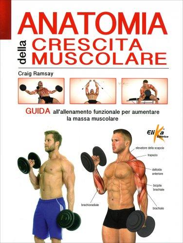 Anatomia della Crescita Muscolare
