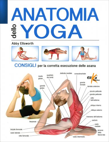 Anatomia dello Yoga