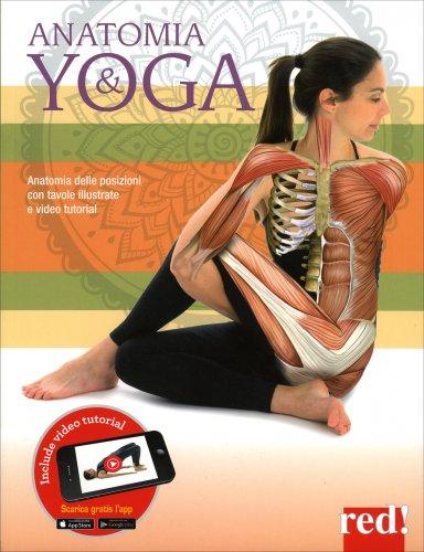 Anatomia e Yoga