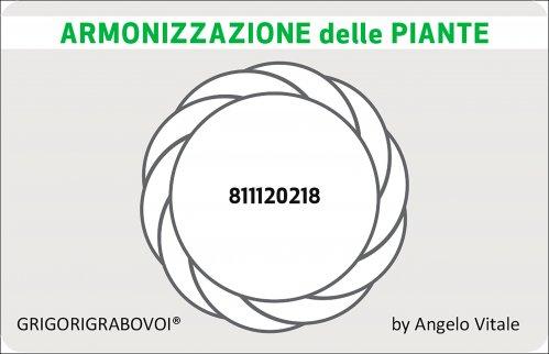 Tessera Radionica 57 - Armonizzazione delle Piante