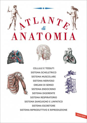 Atlante di Anatomia (eBook)