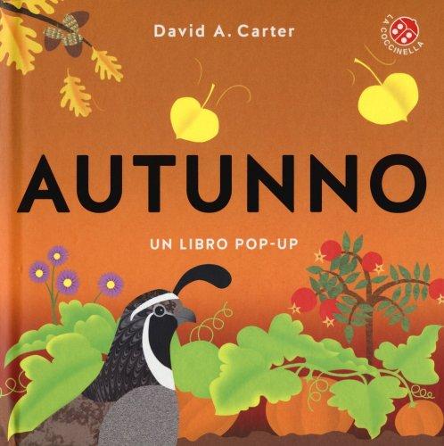 Autunno - Libro Pop-Up