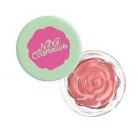 Blush Garden - Tuesday Rose